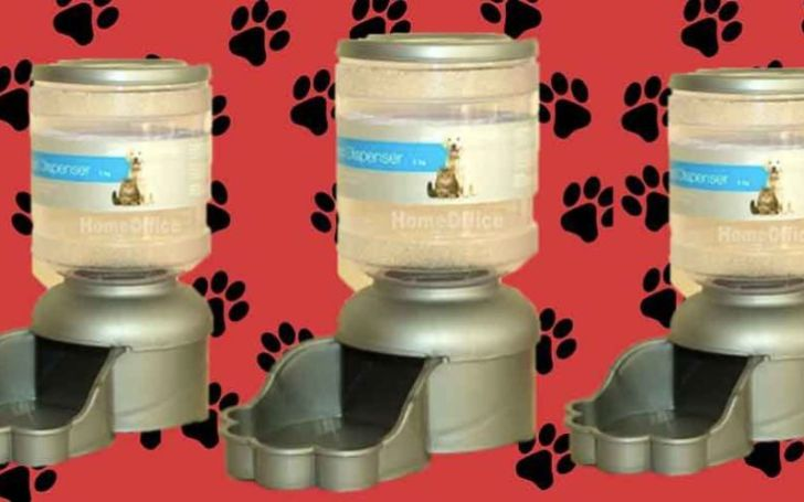 Home Bargains Is Selling A Pet Water Dispenser