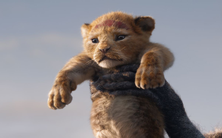 Grab All The Details Of The Precious Lion Cub Disney Used In The Lion King As Inspiration For Simba
