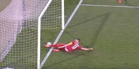 Serbian defender clearing the ball as it crossed the line.