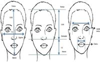 The Golden Ratio of Beauty Phi - How Does it Work?
