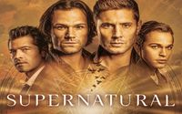No New Supernatural Episode This Week; Episode 4 Moved from Tomorrow to 7 November