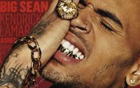 Does Chris Brown Carry A History Of Lashing Out At Fans On Social Media?
