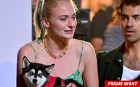 Sophie Turner Looked Understandably Upset While Cuddling Her Dog Porky On Set Of Joe Jonas' Music Video