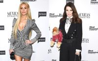 Dorit Kemsley and Her Former Pet Chihuahua Lucy are at The Center of The Drama on The Real Housewives of Beverly Hills