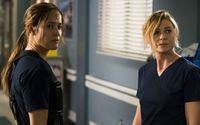 Grey's Anatomy Set For Dramatic Crossover with Station 19 This Season