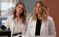 Grey's Anatomy Star Says 'A Lot' Of Surprises Are In Store For Fans In The Season 15 Finale